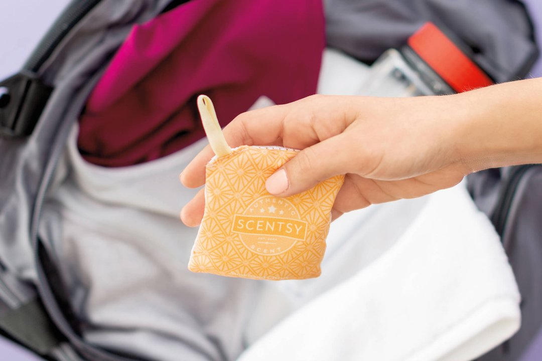 Everything You Need To Know About Taking Scentsy On The Go Scentsy Blog