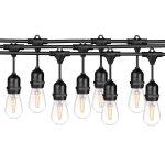 LEDPAX 48 FT LED Outdoor Waterproof String Lights, 15 Hanging Sockets, 16 S14 LED Edison Bulbs, Black
